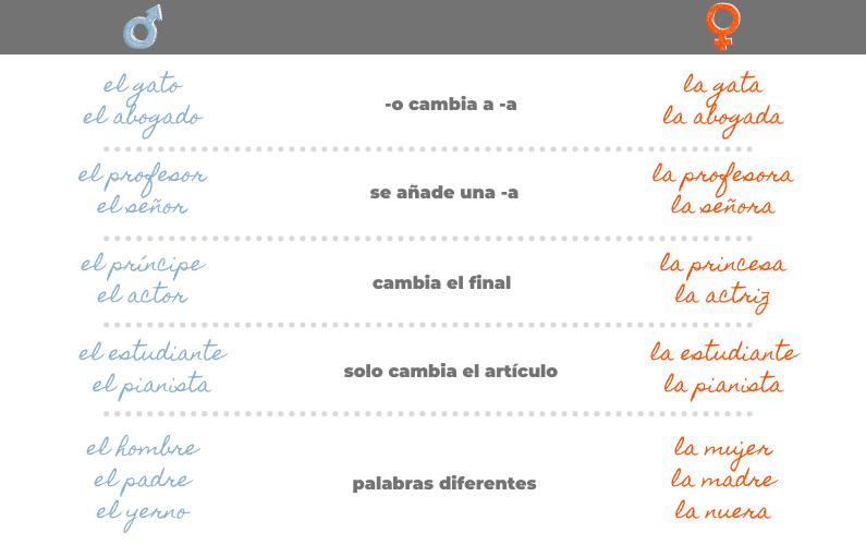 Género en español